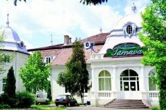 Restaurantul Tarnava